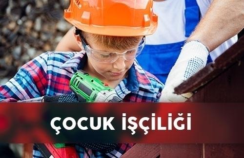 GRI 408: Çocuk İşçiliği