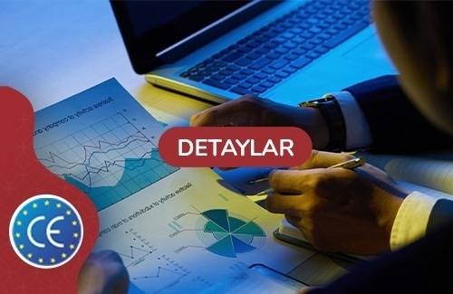 Deprem Performans Analizi