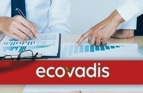 EcoVadis Derecelendirme Kategorileri
