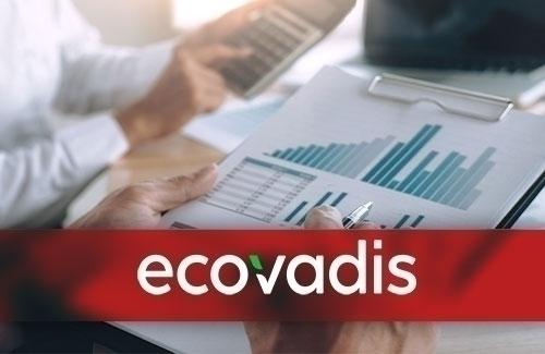 EcoVadis Derecelendirmesi ve EcoVadis Çalışma Sistemi