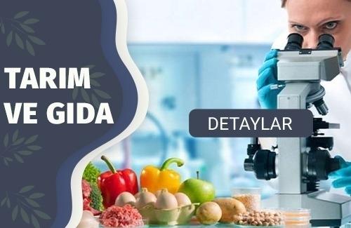 Gıda Sektörü Kalite Ve Gıda Güvenliği Sertifikaları