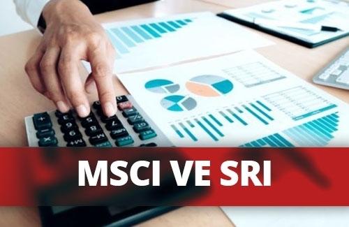 MSCI Global Sürdürülebilirlik ve SRI Endeksleri