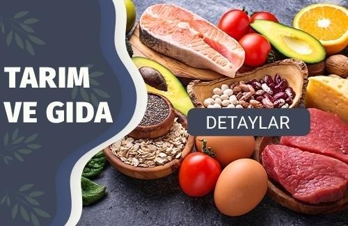 Organik Gıda Belgesi