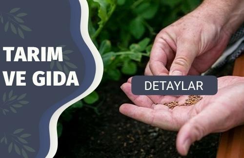Tohum Üretiminde Gıda Güvenliği Yönetim Sistemi (GGYS)