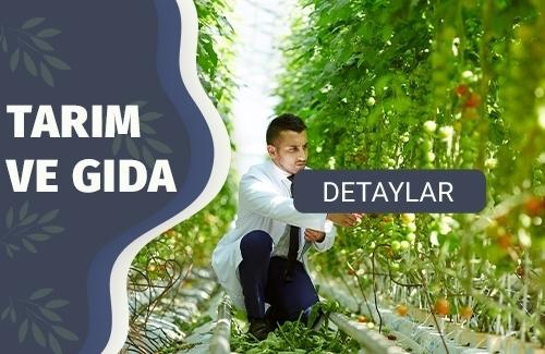 USDA (ABD Tarım Bakanlığı) Belgesi